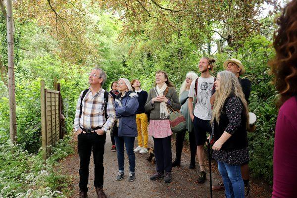 Guided Tour of Glastonbury