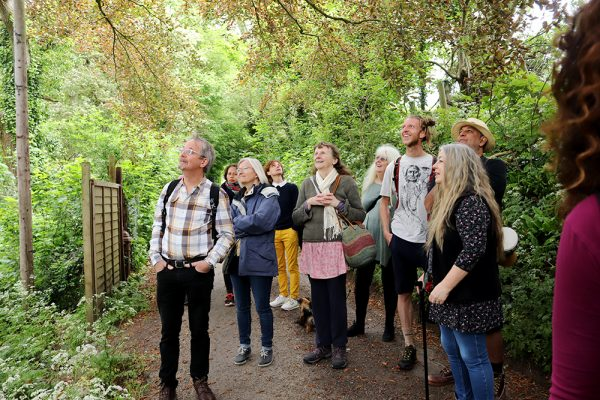 Guided Tour of Glastonbury