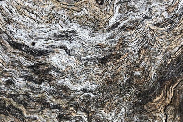 ash-grain-pattern