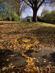 Norway Maple Mandala